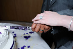 Bride and groom cutting cake closeup Royalty Free Stock Photography