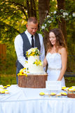Bride and Groom Cutting Cake Stock Images