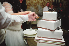 Bride and groom is cutting cake stock image