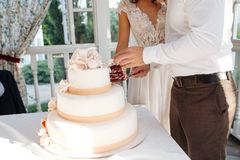 A bride and a groom is cutting their multi level white wedding cake stock images