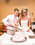 Bride and a groom is cutting their wedding cake Royalty Free Stock Image