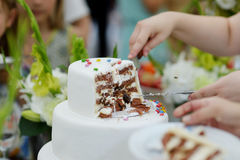 A bride and a groom are cutting a wedding cake Stock Photo