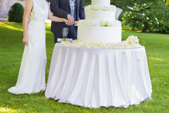Bride and groom cutting wedding cake royalty free stock image