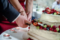Bride and groom cutting wedding cake Royalty Free Stock Photo