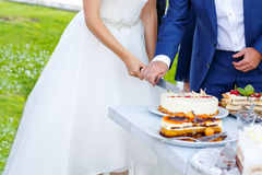 Bride and groom cutting wedding cake Stock Image