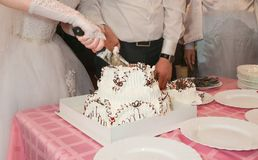 Bride and Groom Cutting the Wedding Cake Royalty Free Stock Photo