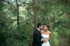 Bride and groom dance together in the woods Royalty Free Stock Photos