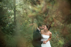 Bride and groom dance together in the woods Stock Photography
