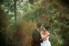 Bride and groom dance together in the woods Stock Image