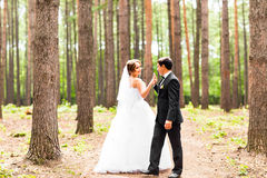 Bride and groom dancing  in nature. Wedding dance outdoors Royalty Free Stock Images