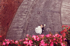 Bride and groom dancing on a paved road Stock Photos