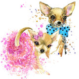 Bride and groom dog T-shirt graphics. mini dog illustration with Royalty Free Stock Photos