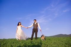 Bride and groom with dog Royalty Free Stock Photos