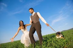 Bride and groom with dog Stock Images