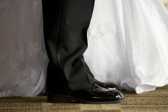 The Bride and Groom Royalty Free Stock Image