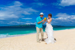 Bride and groom drink coconut water on a tropical beach Royalty Free Stock Image