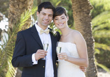 A bride and groom drinking champagne Royalty Free Stock Images