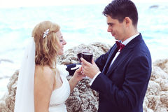 Bride and groom drinking red wine at the ocean Royalty Free Stock Photos