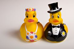 Bride and Groom duckies. Rubber duckies wearing Wedding attire Royalty Free Stock Images
