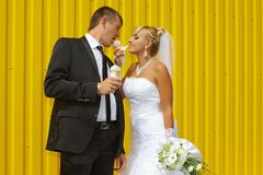 The bride and groom eat ice cream royalty free stock image