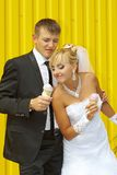 The bride and groom eat ice cream Stock Photos