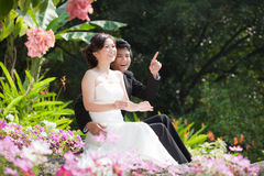 Bride and groom Embrace each other in garden Stock Photo