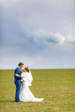 Bride and groom embrace on spring field Royalty Free Stock Images