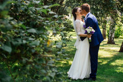 The bride and groom embracing and kissing Stock Photography