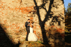 Bride and groom embracing near bricked wall Stock Images