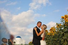 Bride and groom embracing near sunflowers Royalty Free Stock Photos
