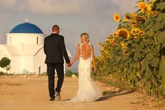 Bride and groom embracing near sunflowers Royalty Free Stock Image