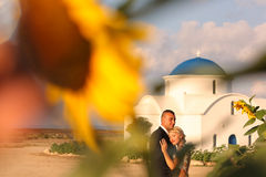 Bride and groom embracing near sunflowers Stock Images