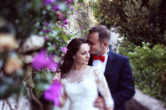Bride and groom embracing near wall full of flowers Stock Photography