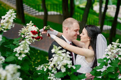 Bride and groom embracing in the park on the background flowers Royalty Free Stock Photo