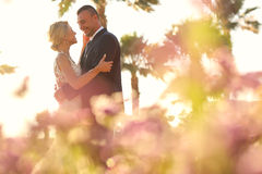 Bride and groom embracing in a tropical resort Stock Images