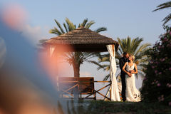 Bride and groom embracing in a tropical resort Stock Photos