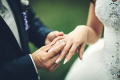Bride and groom exchanging wedding  rings Royalty Free Stock Images
