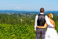 Bride and Groom with Fabulous View Royalty Free Stock Images