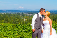 Bride and Groom with Fabulous View Royalty Free Stock Photo