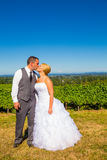 Bride and Groom with Fabulous View Stock Images