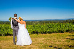 Bride and Groom with Fabulous View Stock Photography