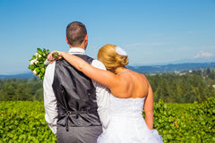 Bride and Groom with Fabulous View Stock Photo