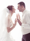Bride and groom face to face on white background Royalty Free Stock Image