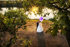 Bride and groom in field. Aerial portrait of bride and groom standing in rural field on waterfront with reflecting sun Stock Photography