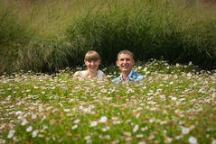 Bride and groom in a field of daisies Royalty Free Stock Image