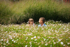 Bride and groom in a field of daisies Royalty Free Stock Photography