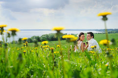 Bride and Groom in the field of dandelion. Wedding couple drink a wine and smiling on a grass Royalty Free Stock Photos