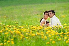 Bride and Groom in the field of dandelion. Wedding couple with a glass in the field of dandelion Royalty Free Stock Image