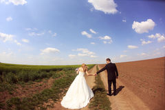 Bride and groom in the fields Stock Photos