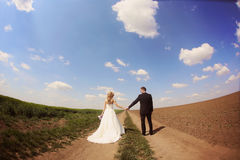 Bride and groom in the fields on their wedding day Stock Images